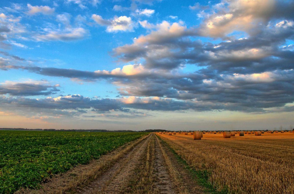 Geografové z Masarykovy univerzity pracují na projektu šetrnějšího zemědělství